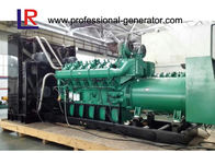 CE Approved 1MW Natural Gas Generator Power Plant with LCD Display