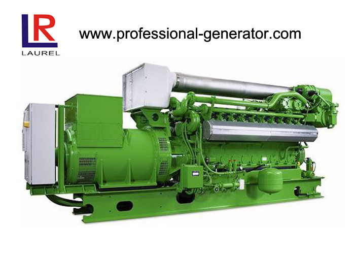Low Gas Consumption 50kw Natural Gas Generators with Brushless Electric Start